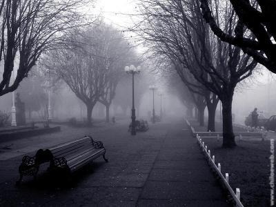 20081111145755-niebla.jpg